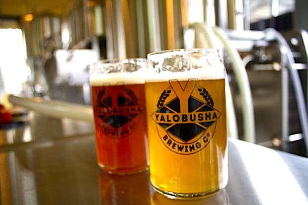 Craft Brewery Business Plan