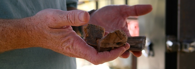 Wood chunks are a major factor in flavoring meat that's being smoked.