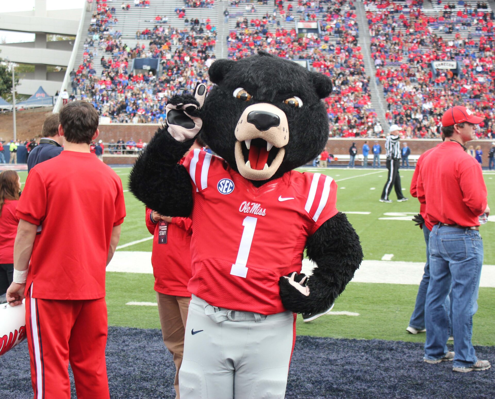 Ole miss gameday colors 2015 - Photo By Callie Daniels Bryant 2014