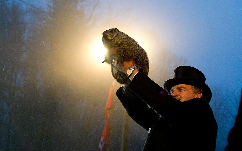 groundhog-day-2014-ftr