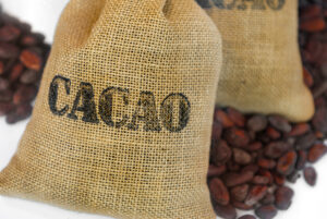 cacaobag-shutterstock_100886587