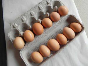 egg-sizevariations-DSCN0113