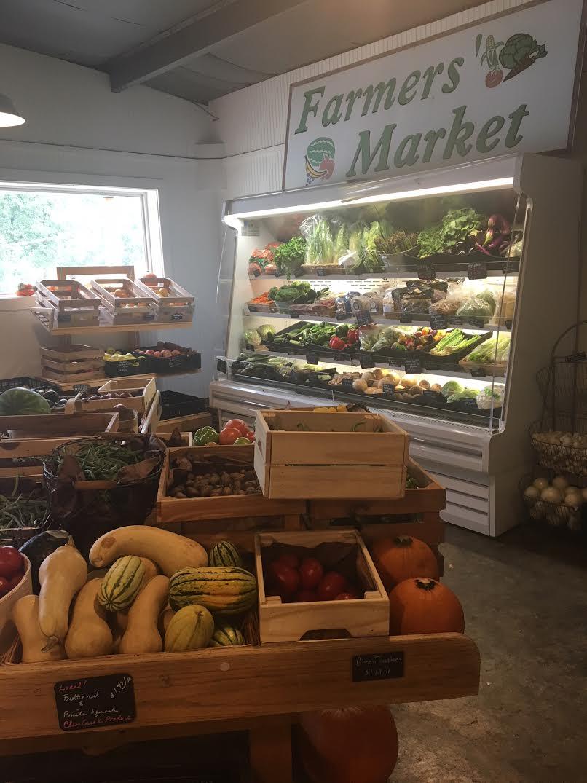 Chicory-produce