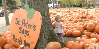 pumpkin-patch-st-peters