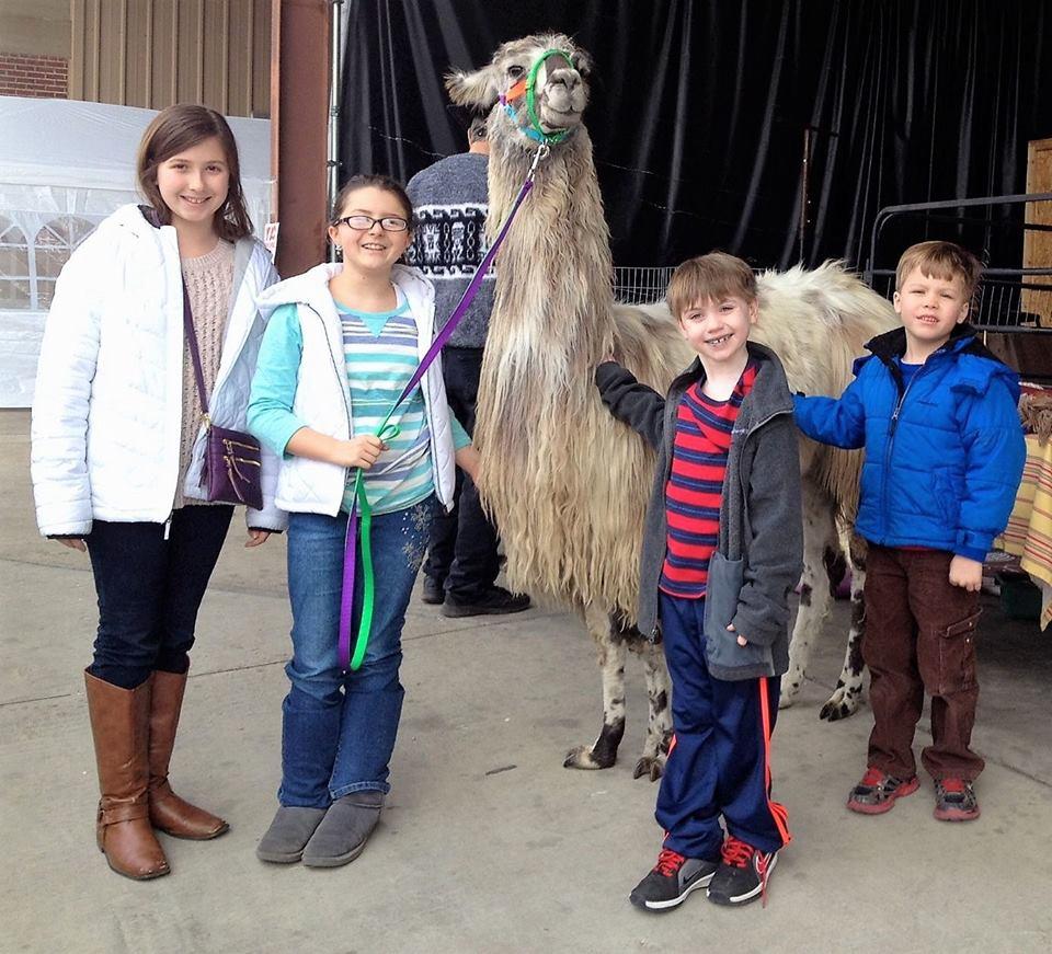 Oxford Fiber Arts Festival kids with llama